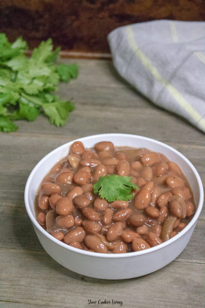 A look at a delicious bowl full of pinto beans ready to eat.