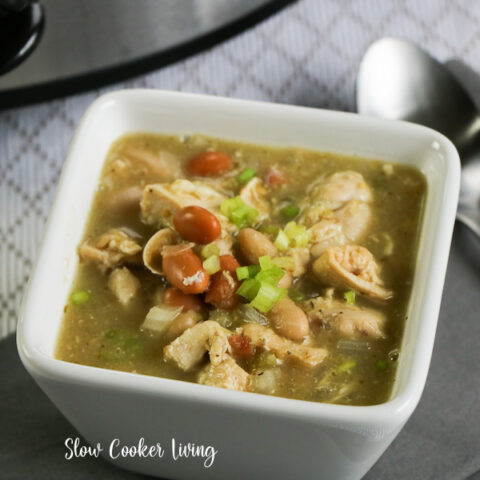 Featured image showing a bowl of the finished white chicken chili made in the crockpot ready to eat.